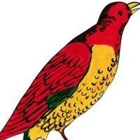 Hungry Birds Cafecito
