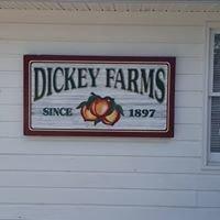 Dickey's Peach Farm