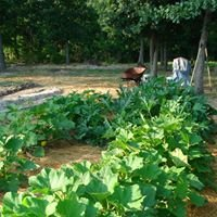Hickory Hill Farm Carlton GA