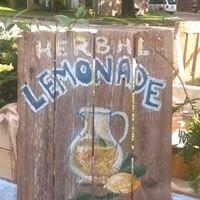 Herbal Lemonade