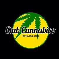 Club Cannabico Punta del Este