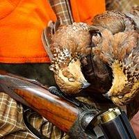 Dorchester Shooting Preserve