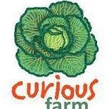 Curious Farm
