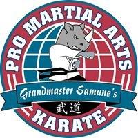 PRO Martial Arts Johns Creek