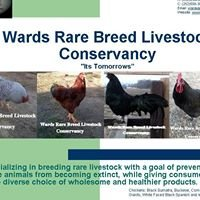 Wards Rare Breed Livestock Conservancy