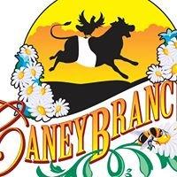 Caney Branch Farm