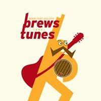 Beerfest-duluth, Ga: Brews & Tunes