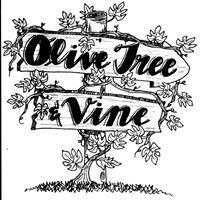 Olive Tree & Vine Marietta