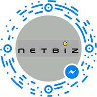 netbiz consulting