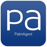 PalmAgent