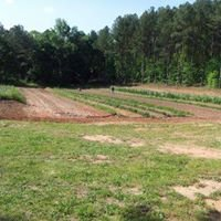 Whippoorwill Hollow Organic Farm
