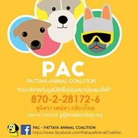 PAC - Pattaya Animal Coalition