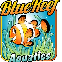 Blue Reef Aquatics