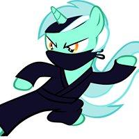 Ninja Unicorn