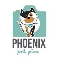 Phoenix Pet Pics