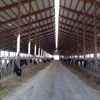 Tubergen Dairy Farm LLC
