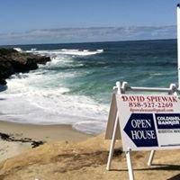 David Spiewak - San Diego Real Estate Broker