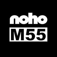 M55 Art