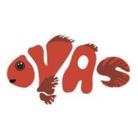 Ottawa Valley Aquarium Society (OVAS)