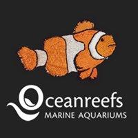 Ocean Reefs Marine Aquariums