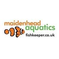 Maidenhead Aquatics at Beverley