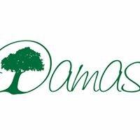 Damas Restaurant & Guesthouse