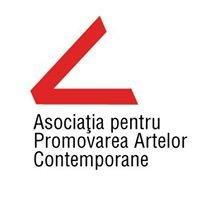 Asociatia pentru Promovarea Artelor Contemporane