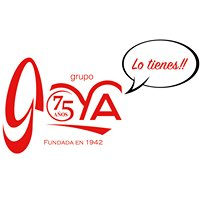 Bellas Artes Goyavirtual.com