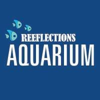 Reeflections Aquarium