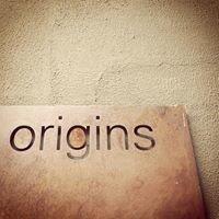 Origins centre Wits University