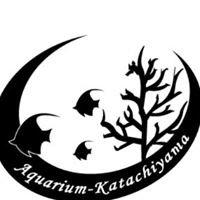 形山水族館