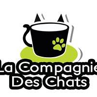 La Compagnie Des Chats - bar à chats