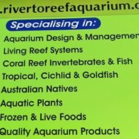River To Reef Aquarium Coffs Harbour