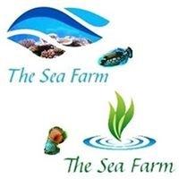 The Sea Farm sprl