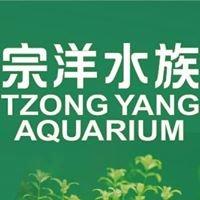 宗洋水族 Tzong-Yang Aquarium