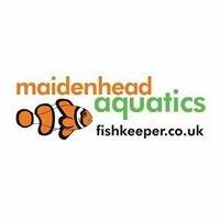 Maidenhead Aquatics at Cadbury