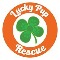 Lucky Pup Rescue SC