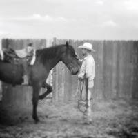 Brent Winston Horsemanship