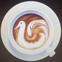 MT. COOK CAFE