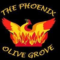 Phoenix Olive Grove