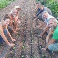 Grow Community Organics