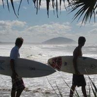 Screen Sunshine Coast