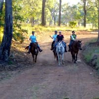 Cowboy Up Trail Riding