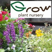 Grow Plant Nursery