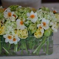 Quince Fine Florals