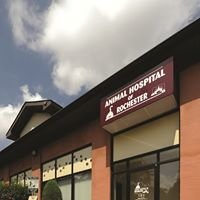 Animal Hospital of Rochester
