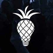 The Pineapple Agency