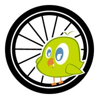 Bicycleray