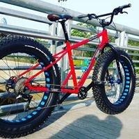Design Logic Bikes