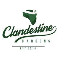 Clandestine Gardens